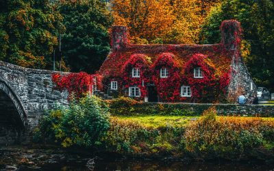 Is Your Home Autumn Ready?